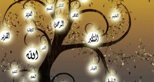 بالصور فائدة كل اسم من اسماء الله الحسنى , فوائد الدعاء باسماء الله الحسني 69 2 310x165