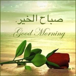 بالصور صباح الخير يا حبيبتي , اجمل صباح للحبيب 1582 3