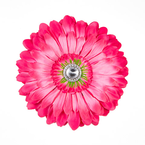 صور صور ورود , اروع الزهور و الورد بالصور