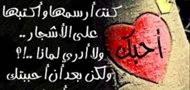 بالصور اجمل كلمات الحب , اروع عبارات العشق 1628 3