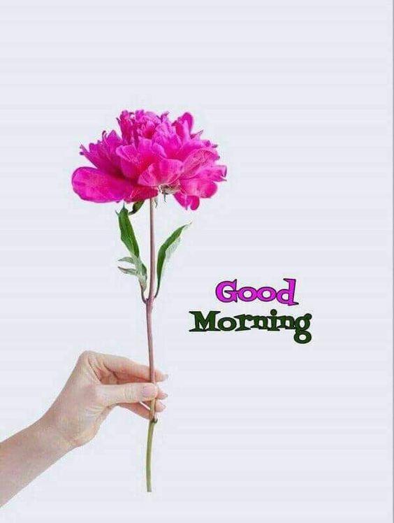 بالصور منشورات صباحية , بوست صباح الخير 1629 8