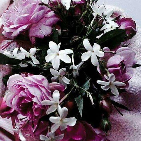 صورة مساء الورد , اجمل مساءات الزهور
