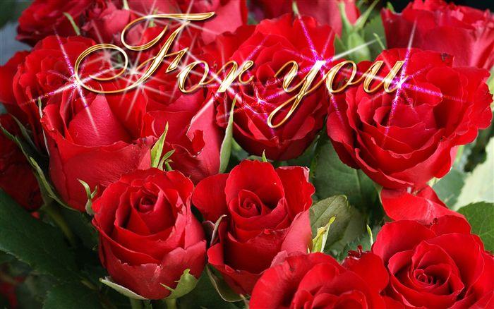 بالصور اجمل ورود الحب , صور ورود بالوان رومانسية 3603 3