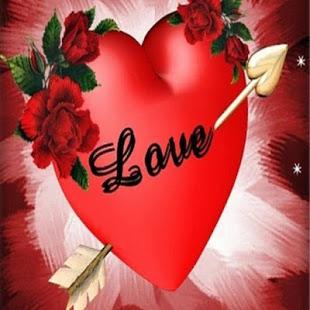 صورة اجمل ورود الحب , صور ورود بالوان رومانسية