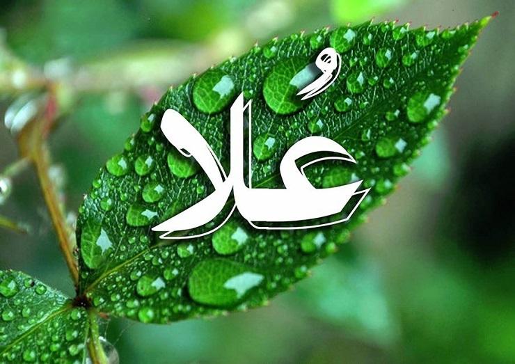 بالصور صور اسم علا , اسم علا علي خلفيات 3636 1