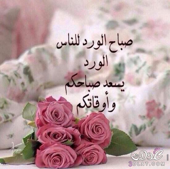 صورة صور صباح الورد , اجمل صور الصباح