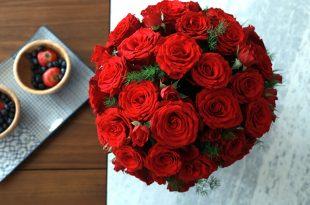 صوره صور عن الورد , اروع صور عن الورد
