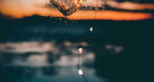 صوره صور جميلة , اجمل صور ممكن ان تراها
