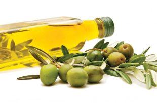 صورة اضرار زيت الزيتون للشعر , احدث الدراسات بخصوص زيت الزيتون للشعر