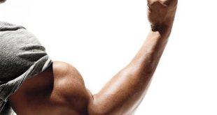 صورة تمارين العضلات , اقوى التمارين لتقوية العضلات