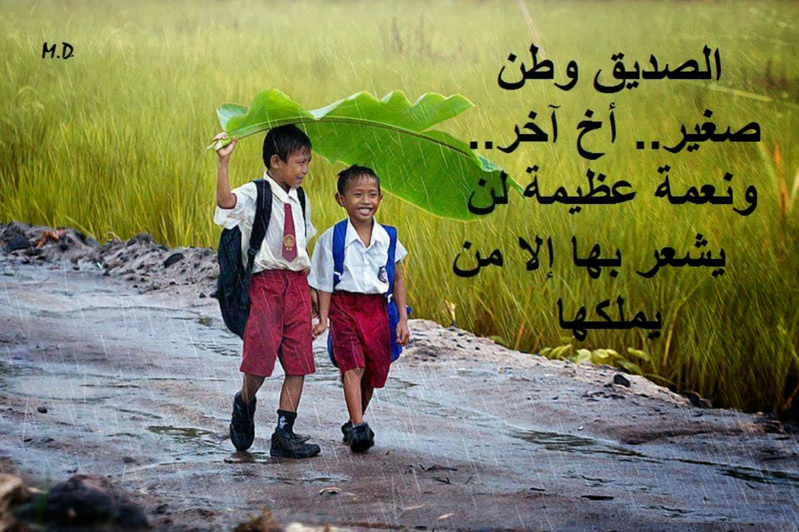 صورة كلام عن الصديق , عبارات تصف الصديق