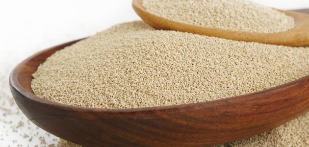 صورة اضرار خميرة الخبز , المشاكل الصحية الناتجة من استخدام خميرة الخبز