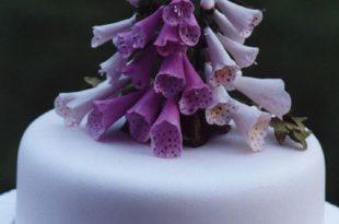 بالصور تورتات اعياد ميلاد للكبار , اجمل تورتة عيد ميلاد للكبار 1441 2 310x205