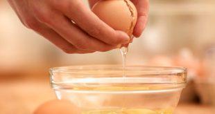 صورة اضرار بياض البيض , الفوائد والاضرار التي تعود علينا من تناول البيض