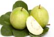 صور اضرار ورق الجوافه , فوائد واضرار اوراق الجوافة بالتفصيل