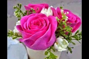 صوره اجمل صور الورد , احلي ورود