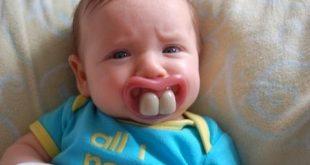 بالصور فديوهات مضحكة , اضحك من قلبك 3748 2 310x165