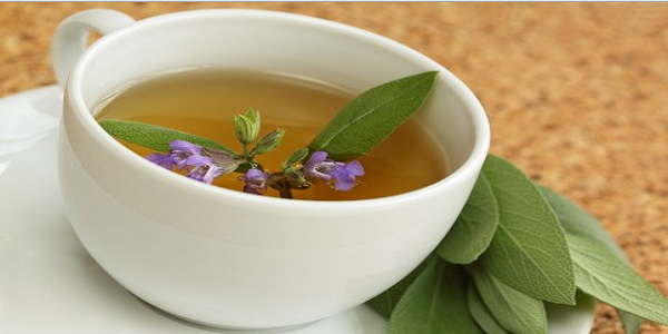 صورة عشبة الميرمية , فوائد عشبة الميرمية واستخدامها