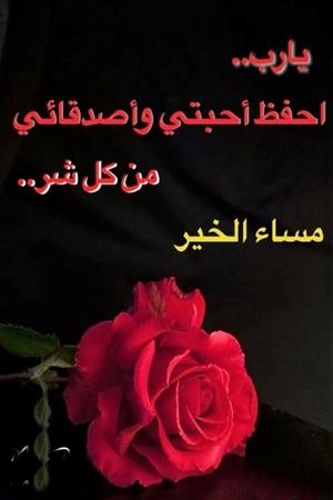 بالصور كلمات مساء الخير للاصدقاء , اروع كلمات مساء الخير للاصدقاء 1258 2