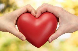 بالصور نسبة الحب , اختبار نسبة الحب 1265 2 310x205