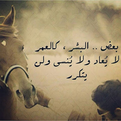 بالصور بيت شعر عن الشوق , اجمل بيت شعر 3720 6