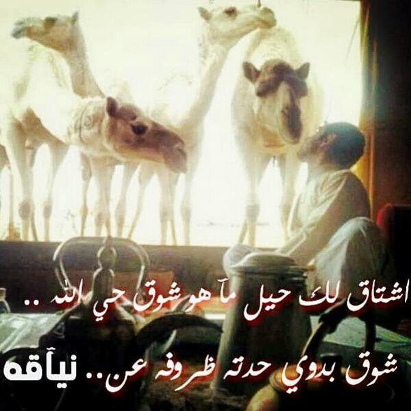 بالصور شعر غزل بدوي , اجمل كلمات الغزل 3736 3