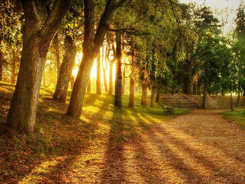 صوره خلفيات مناظر طبيعية , اجمل الخلفيات الطبيعية