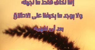 بالصور كلام جميل , اجمل الكلمات 3821 9 310x165