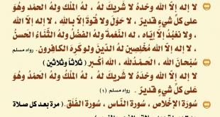 بالصور ادعية بعد الصلاة , اجمل الادعية الدينية بعد الصلاة 3826 1 310x165
