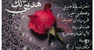 بالصور مدح صديق غالي , كلمات مدح للصديق 3842 10 310x165