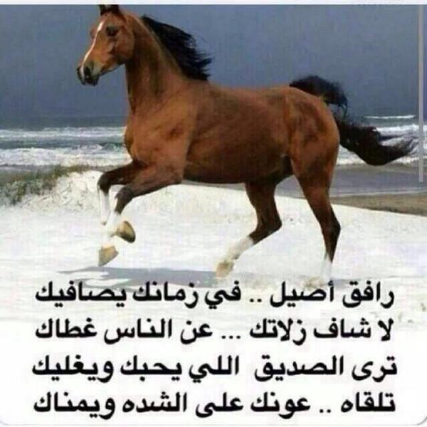 بالصور مدح صديق غالي , كلمات مدح للصديق 3842 7