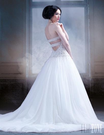 بالصور فساتين اعراس , اجمل الصور للفساتين الاعراس 3843 8
