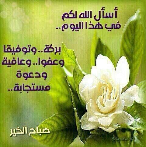 بالصور صباح البركة , صور مكتوب عليها صباح البركة 3854 2
