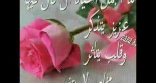 بالصور مساء الحب حبيبي , اجمل مساء الخير 3899 8 310x165