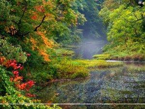 بالصور مناظر طبيعيه روعه , اجمل الصور لمناظر الطبيعيه الخلابة 3921 3