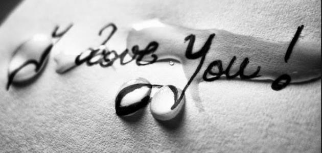 بالصور عبارات حب للحبيب , اجمل العبارات الحب للحبيب 3950 2