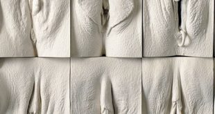 بالصور افضل انواع المهبل عند الرجال , ما يفضله الرجال في المراة 3975 2 310x165