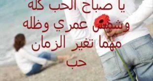 بالصور شعر صباح الخير حبيبي , صباح الخير قصيدة 402 10 310x165