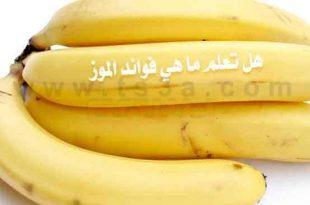 صور ماهي فوائد الموز , اهمية الموز