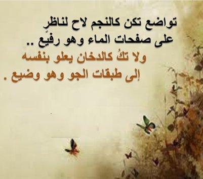 بالصور صور عليها حكم , حكمه مفيده ف صوره 4062 7