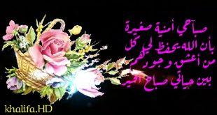 بالصور اجمل صباح الخير , اجمل كلمات صباح الخير 4067 9 310x165