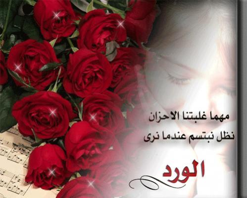 بالصور كلمات عن الورد , اجمل صور كلمات عن الورد 4098 2