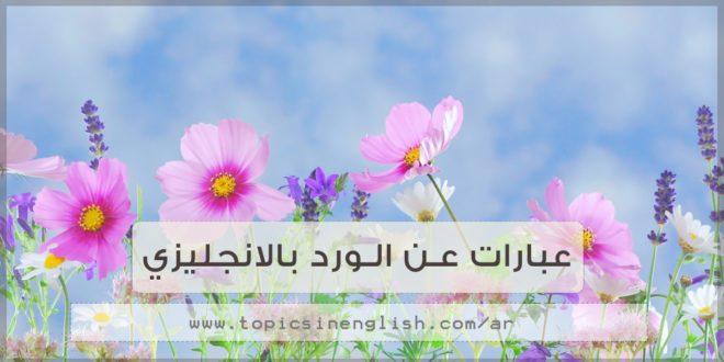 بالصور كلمات عن الورد , اجمل صور كلمات عن الورد 4098 5