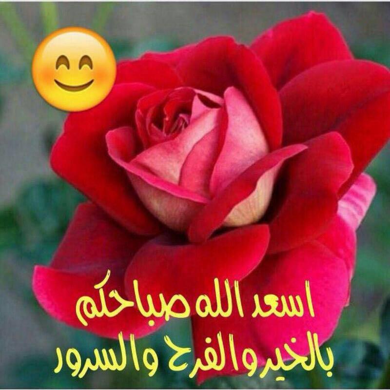 بالصور كلمات عن الورد , اجمل صور كلمات عن الورد 4098 7