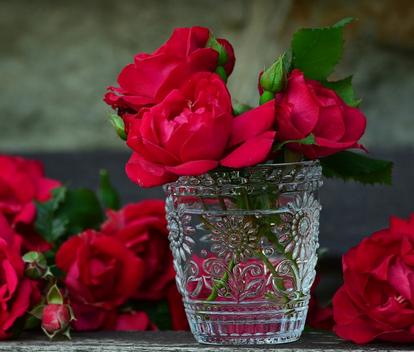 بالصور كلمات عن الورد , اجمل صور كلمات عن الورد 4098