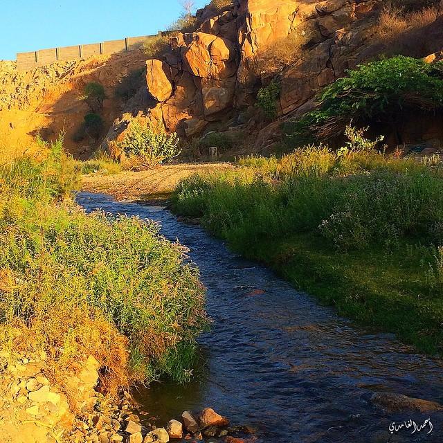 بالصور صور جمال الطبيعة , اجمل صور الطبيعة 489 6