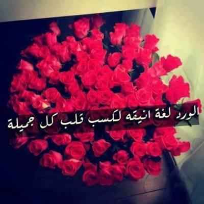 صورة خواطر عن الورد , اجمل الكلمات عن الورد