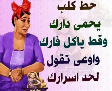 بالصور امثال عربية مضحكة , تعلم الضحك مع الامثال العربية 6950