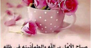 صورة بالصور صباح الخير , ماذا يقال ف الصباح بالصور