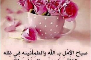 بالصور بالصور صباح الخير , ماذا يقال ف الصباح بالصور 6957 13 310x205